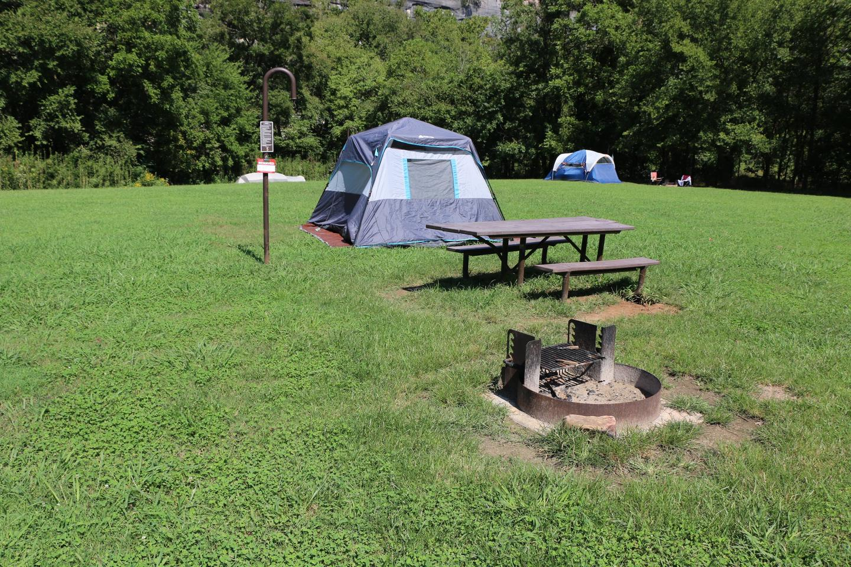 Steel Creek Camp Site #5 (photo 4)Steel Creek Camp Site #5