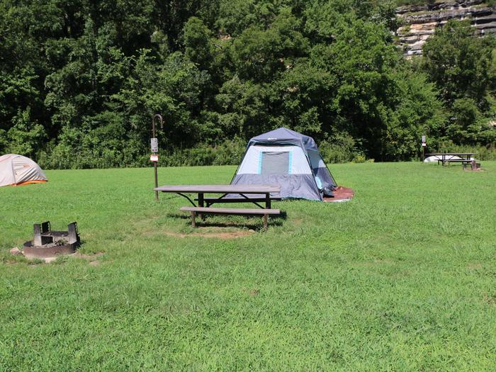 Steel Creek Camp Site #5