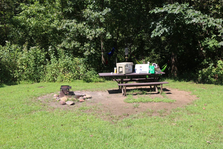 Steel Creek Camp Site #21 (photo 5)Steel Creek Camp Site #21