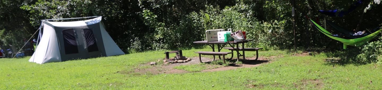 Steel Creek Camp Site# 21