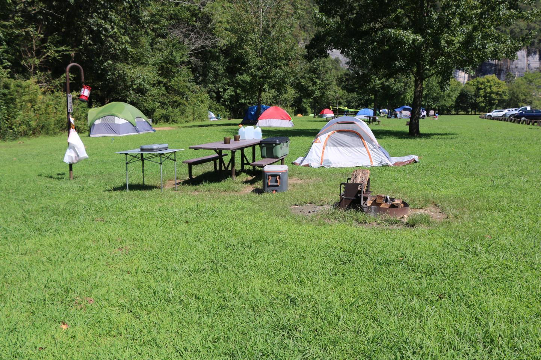 Steel Creek Camp Site #20 (photo 4)Steel Creek Camp Site #20