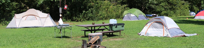 Steel Creek Camp Site #20