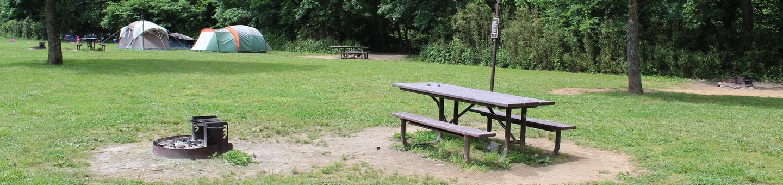 Steel Creek Camp Site #17Steel Creek Camp Site #17-1