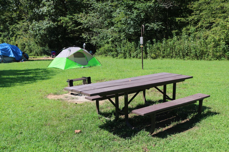 Steel Creek Camp Site #16 (photo 3)Steel Creek Camp Site #16