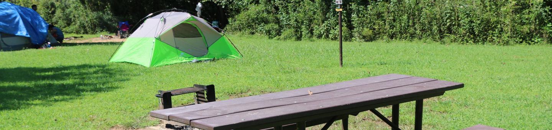 Steel Creek Camp Site #16-2Steel Creek Camp Site #16