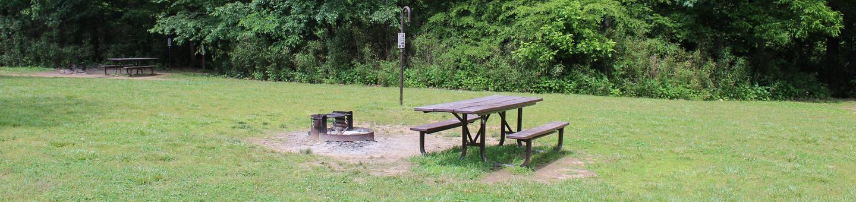 Steel Creek Camp Site #16Steel Creek Camp Site #16-1
