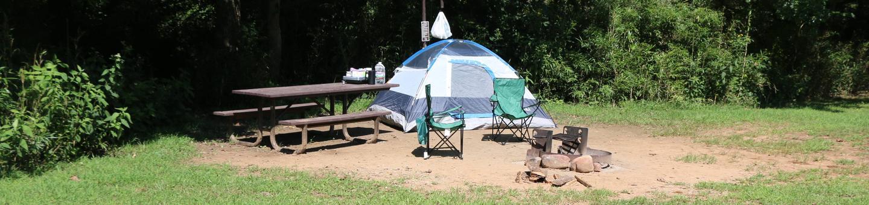 Steel Creek Camp Site #14