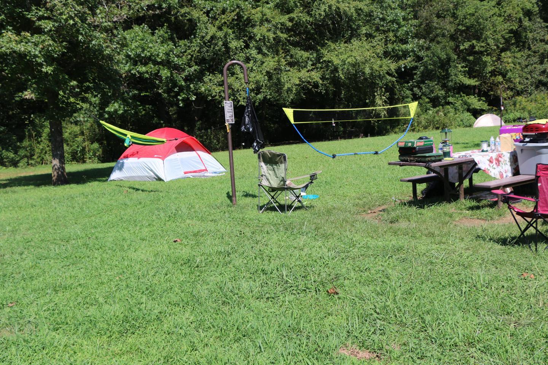 Steel Creek Camp Site #15 (photo 4)Steel Creek Camp Site #15