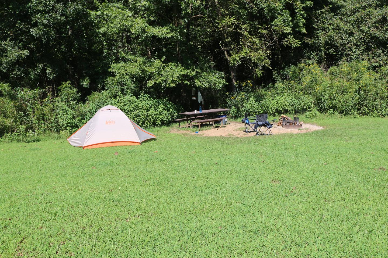 Steel Creek Camp Site #10 (photo 3)Steel Creek Camp Site #10