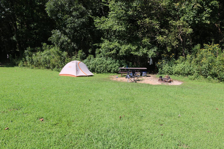 Steel Creek Camp Site #10 (photo 4)Steel Creek Camp Site #10