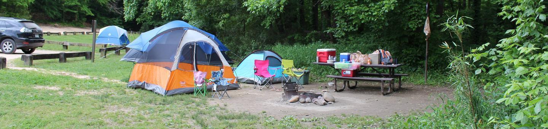 Steel Creek Camp Site #23