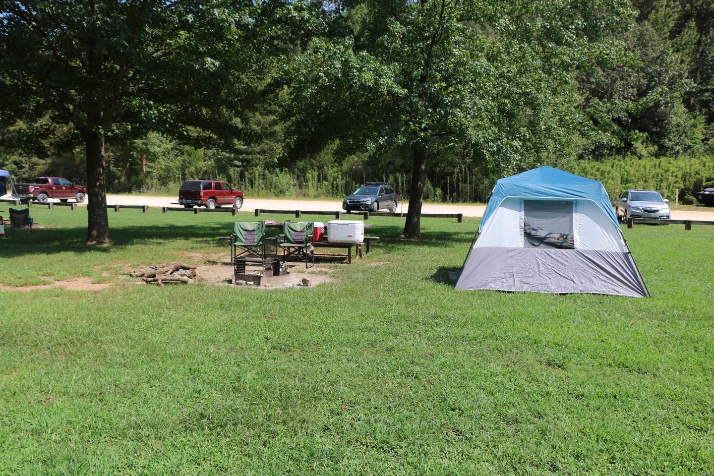 Steel Creek Camp Site #9 (photo 1)Steel Creek Camp Site #9
