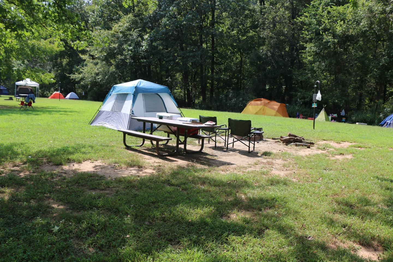 Steel Creek Camp Site #9 (photo 2)Steel Creek Camp Site #9