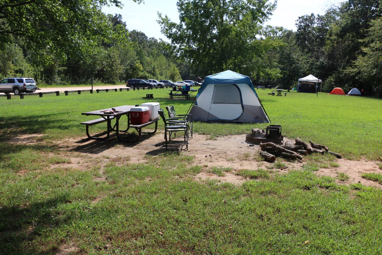 Steel Creek Camp Site #9 (photo 3)Steel Creek Camp Site #9