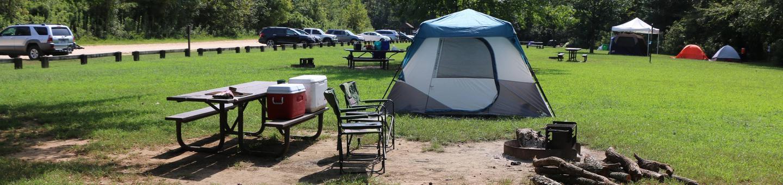 Site 9-4Steel Creek Camp Site #9