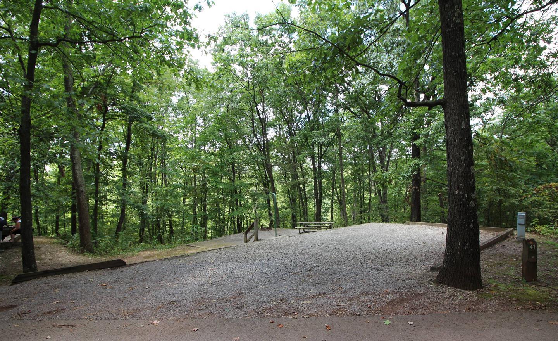 Campsite PictureSite 41