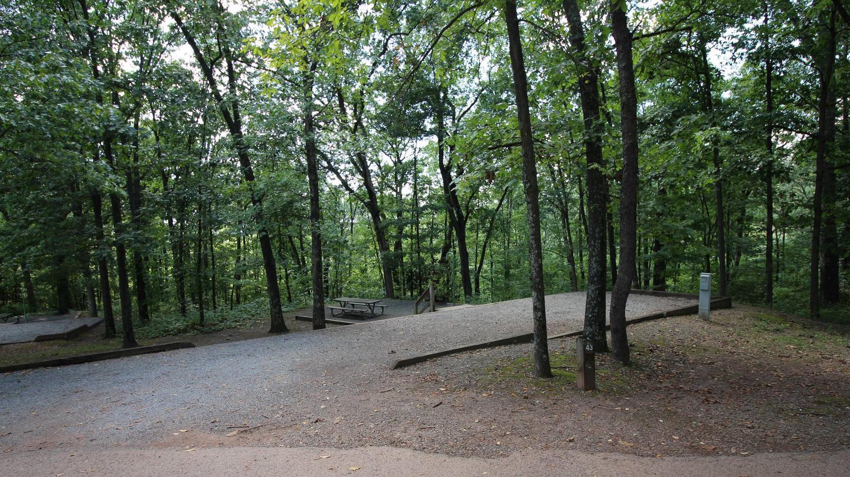 Campsite PictureSite 43