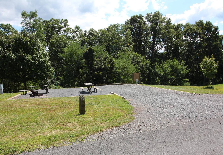 Campsite PictureSite 44
