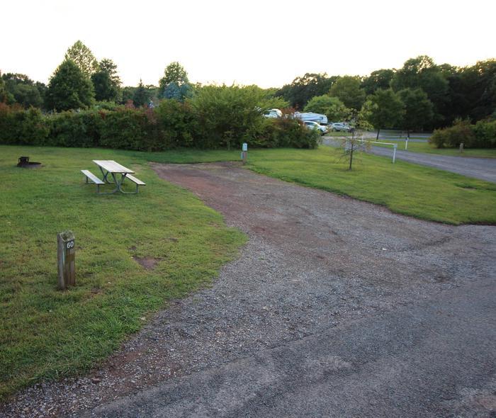 Campsite PictureSite 60