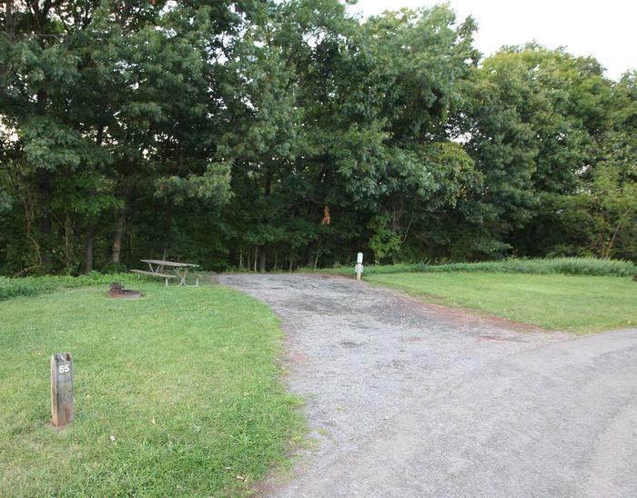Campsite PictureSite 65