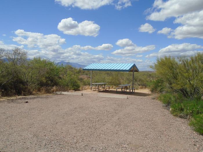 Campsite 177, Cane LoopCholla Campground