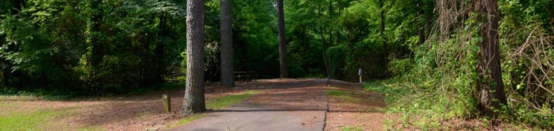 Victoria Campground Site 01