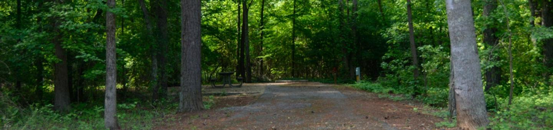 Victoria Campground Site 02