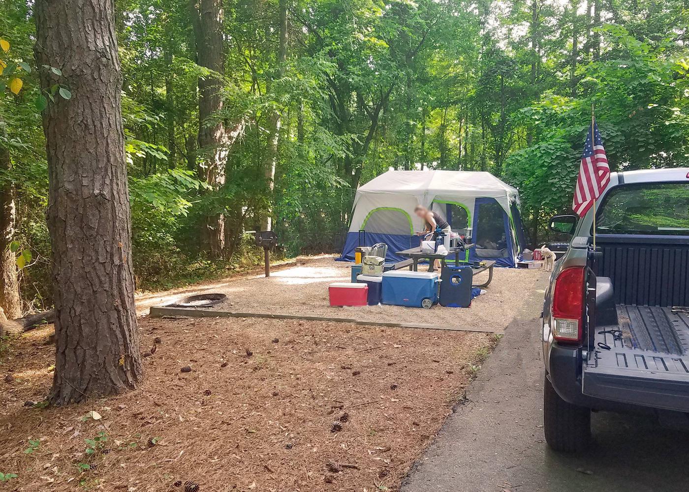 Campsite view.Victoria Campground, campsite 03.