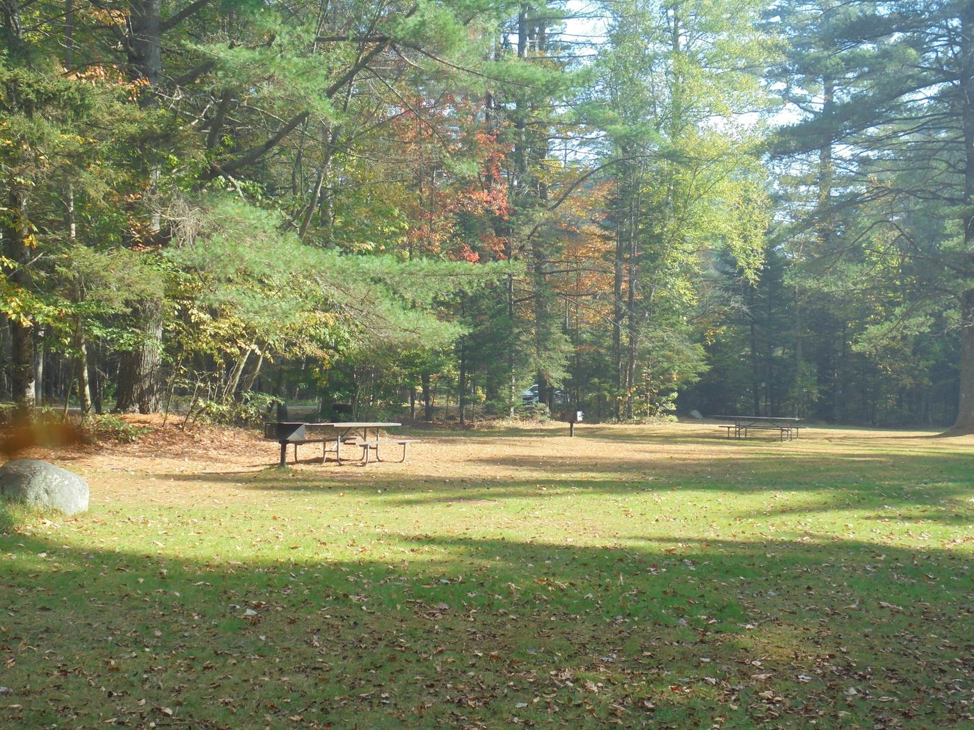 Wildwood Day Use Area (2)