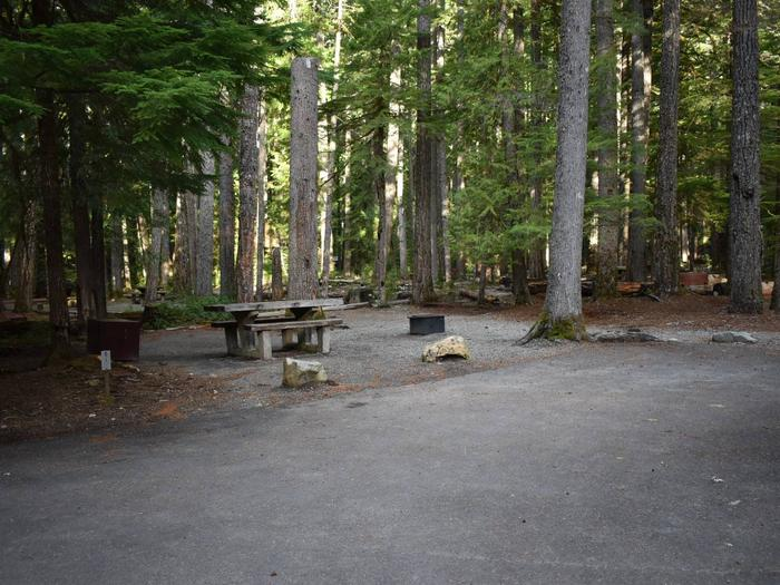 Ohanapecosh Campground - Site D001