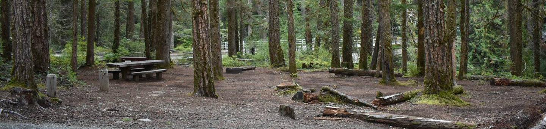 Ohanapecosh Campground - Site D002