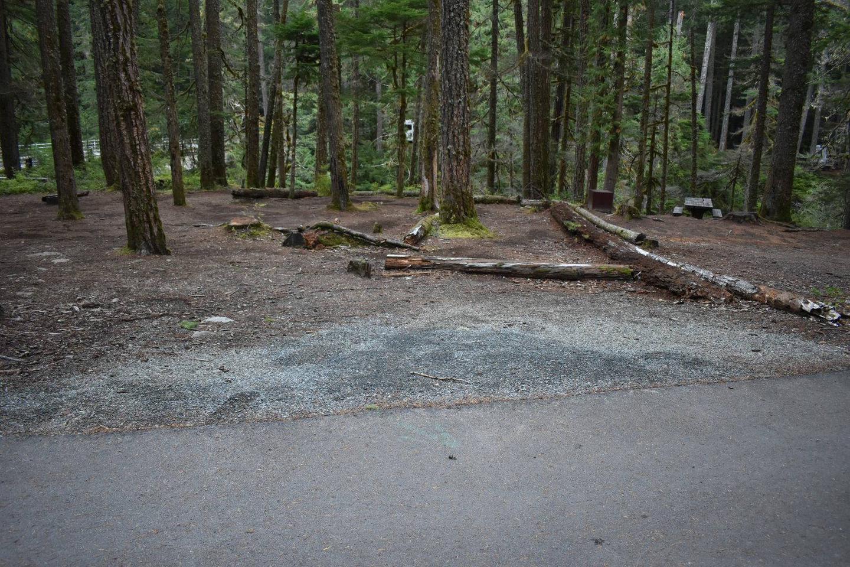 Ohanapecosh Campground - Site D002 Parking Area