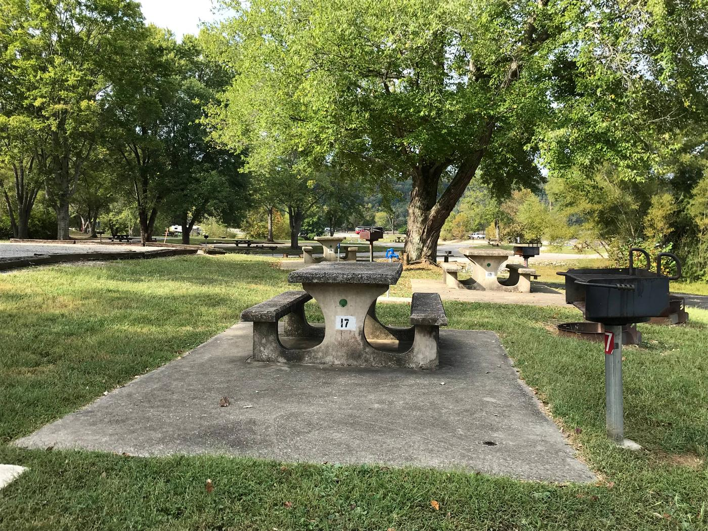 OBEY RIVER PARK SITE # 17 CONCRETE TABLE AND GRILLOBEY RIVER PARK SITE # 17