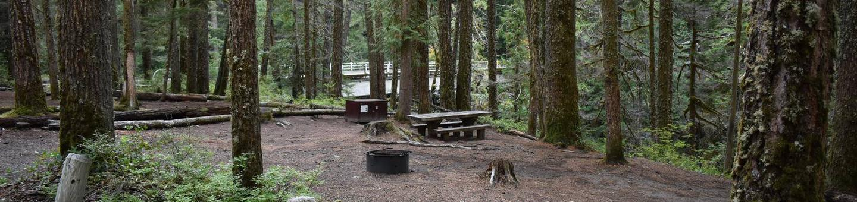 Ohanapecosh Campground - Site D003
