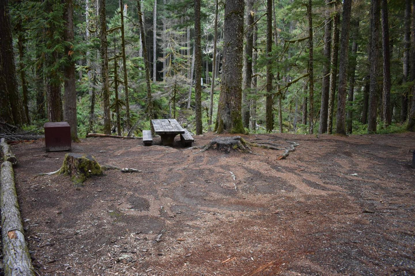 Campers are provided with a picnic table, fire pit, and food storage box.