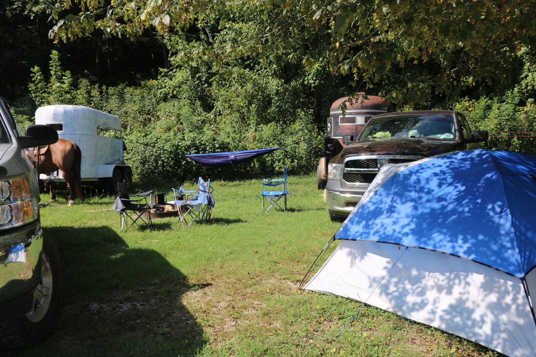 Steel Creek Horse Camp Site#34-1Horse camp site #34