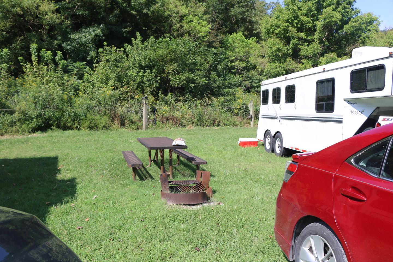 Steel Creek Horse Camp Site #28-1horse camp #28