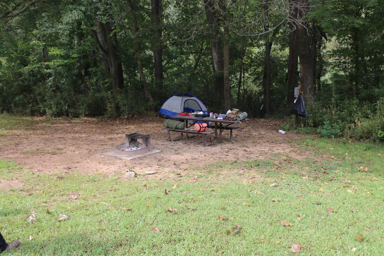 Steel Creek Camp Site #12 (photo 3)Steel Creek Camp Site #12