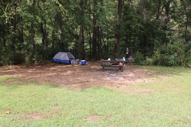 Steel Creek Camp Site #12-2Camp site 12