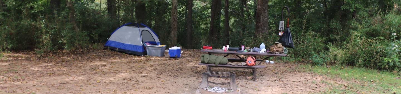 Steel Creek camp site 12site #12
