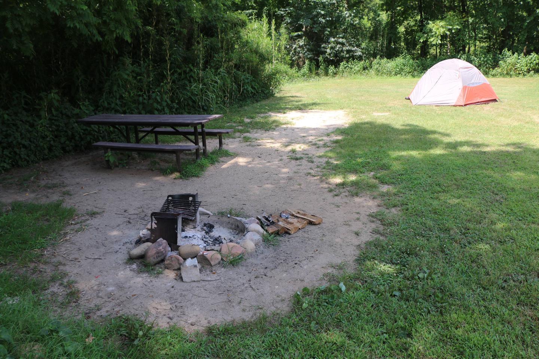 Steel Creek Camp Site #4 (photo 4)Steel Creek Camp Site #4