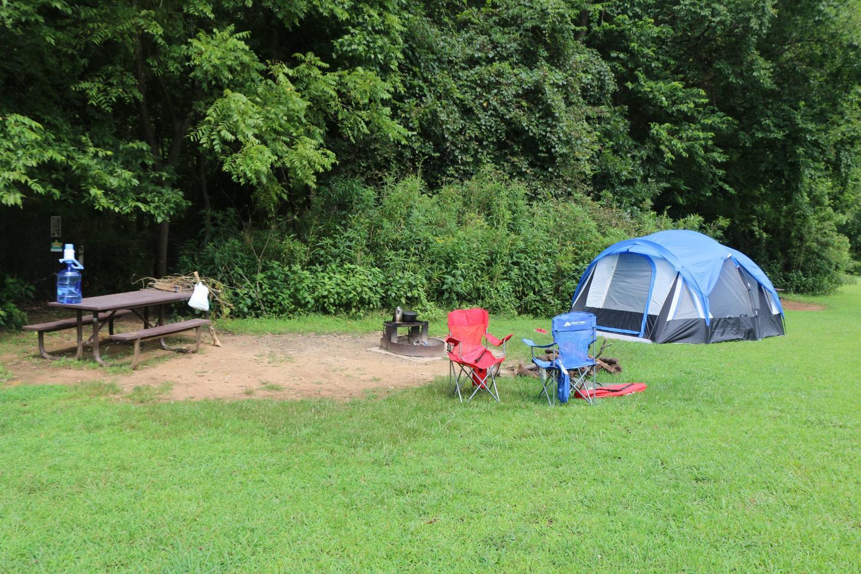 Steel Creek Camp Site #14 (photo 3)Steel Creek Camp Site #14