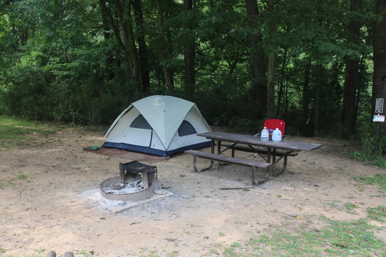 Steel Creek Camp Site #12 (photo 4)Steel Creek Camp Site #12