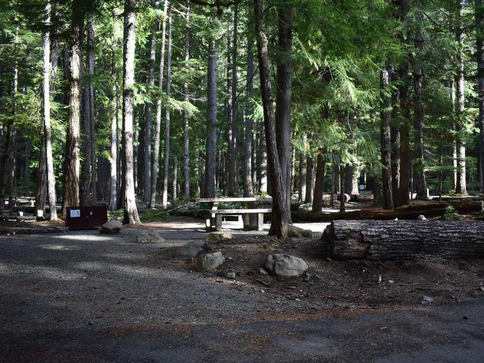 Ohanapecosh Campground - Site D004