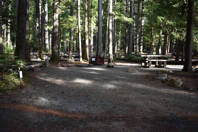 Ohanapecosh Campground - Site D004 Parking Area