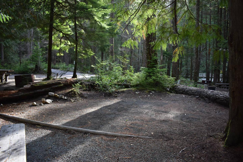 Ohanapecosh Campground - Site D004 Tent Space