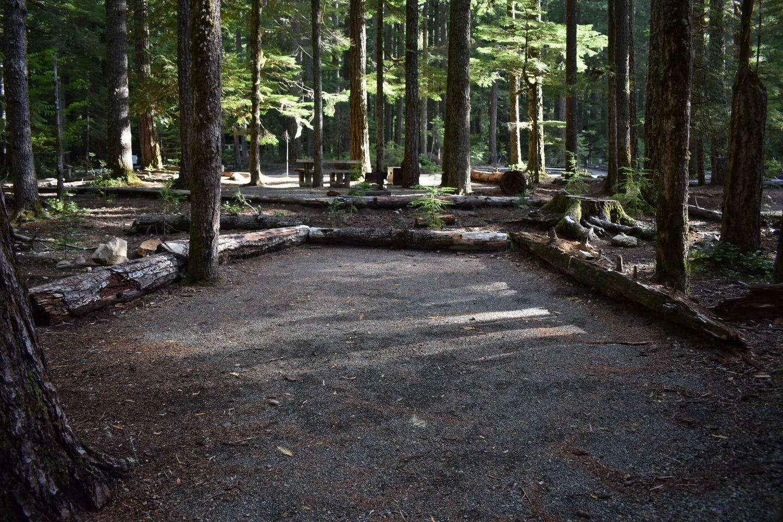 Ohanapecosh Campground - Site D005 Tent Space