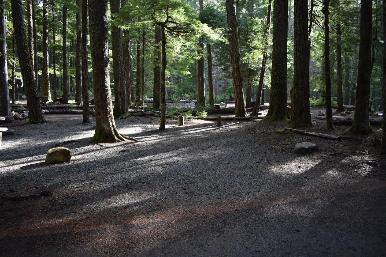 Ohanapecosh Campground - Site D005 Parking Area