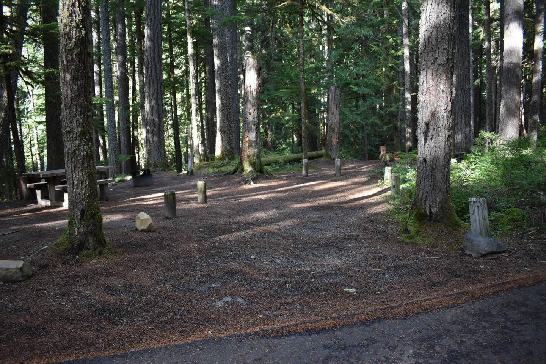 Ohanapecosh Campground - Site D006 Parking Area