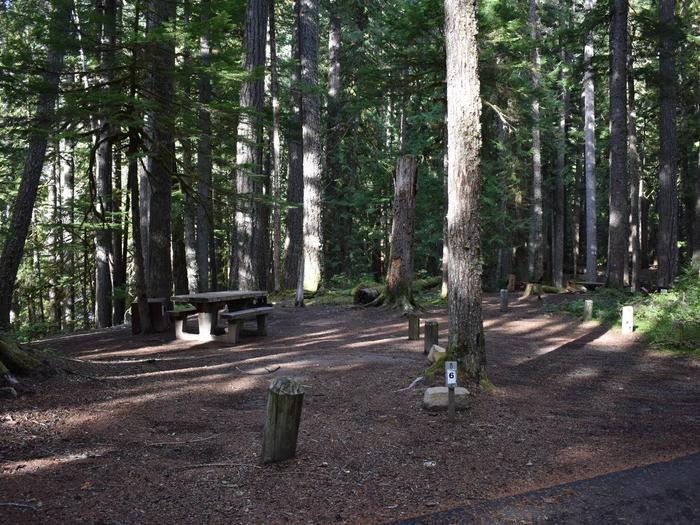Ohanapecosh Campground - Site D006